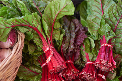 Swiss Chard at the Farmer's Market