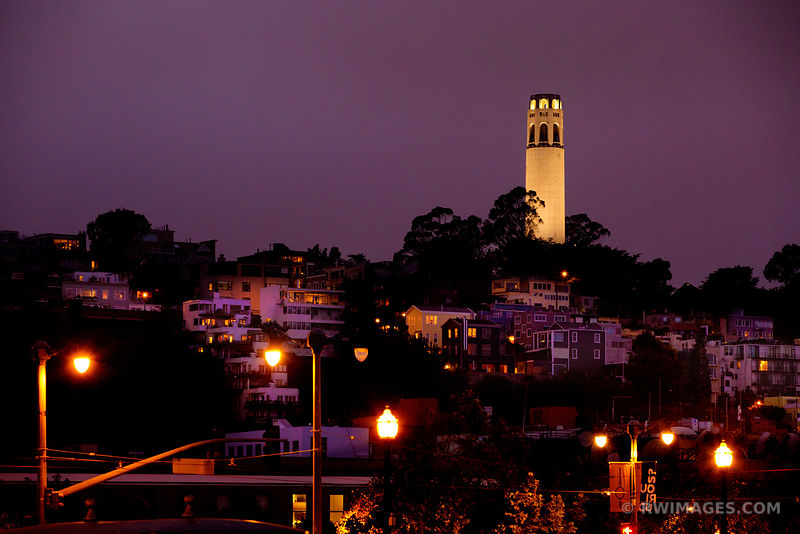 COIT TOWER NIGHT SAN FRANCISCO