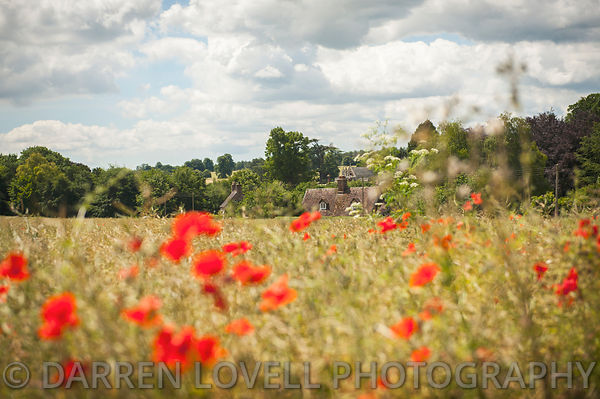 Landscape photos from around Dorset