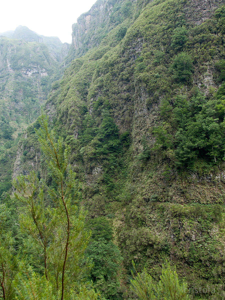 a levada seen from across the valley