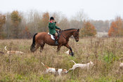 Royal Artillery Hunt 31 October 2012