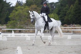 SI_Festival_of_Dressage_300115_Level_6_NCF_0176