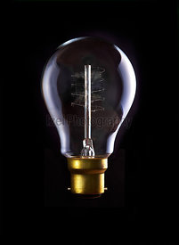 Edison Lightbulb