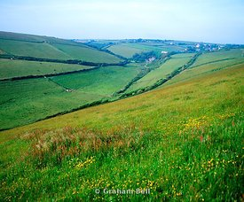fields near ringmore south hams south devon england