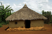 Traditional African mud hut with thatched roof in village Kenya Africa