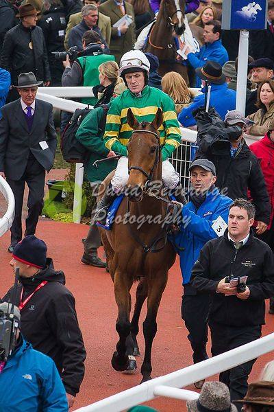 Cheltenham_Gold_Cup_Day_2015_-240