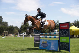 NZ_Nat_SJ_Champs_050215_6YO_0034