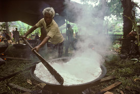 7746_30_Cooking_rice
