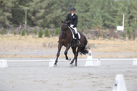 SI_Festival_of_Dressage_310115_Level_1_Champ_0694