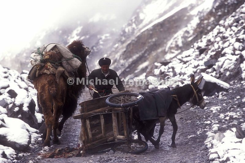 Road accidents are a common sight on this stretch of the Silk Road.