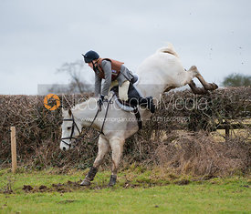 Members of the Belvoir Hunt jump a hedge near Waltham On The Wolds