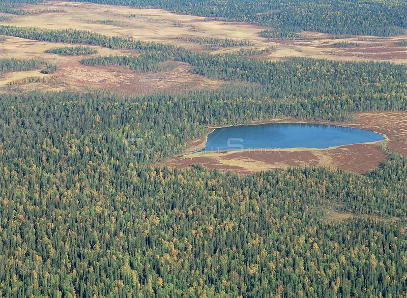 Aerial view of Lake Rautujarvi and surrounding taiga forest, Pallas-Ounastunturi NP, Lapland, Finland