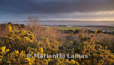 Dee Estuary from Thurstaston