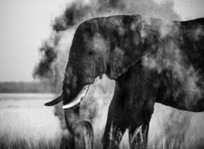 7743-Dust_explosion_3_Kenya_2013_Laurent_Baheux