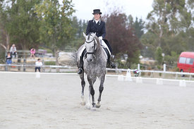 SI_Festival_of_Dressage_310115_Level_6_7_MFS_0841