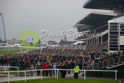 Cheltenham_Gold_Cup_Day_2015_-189