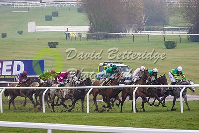 Cheltenham_Gold_Cup_Day_2015_-126