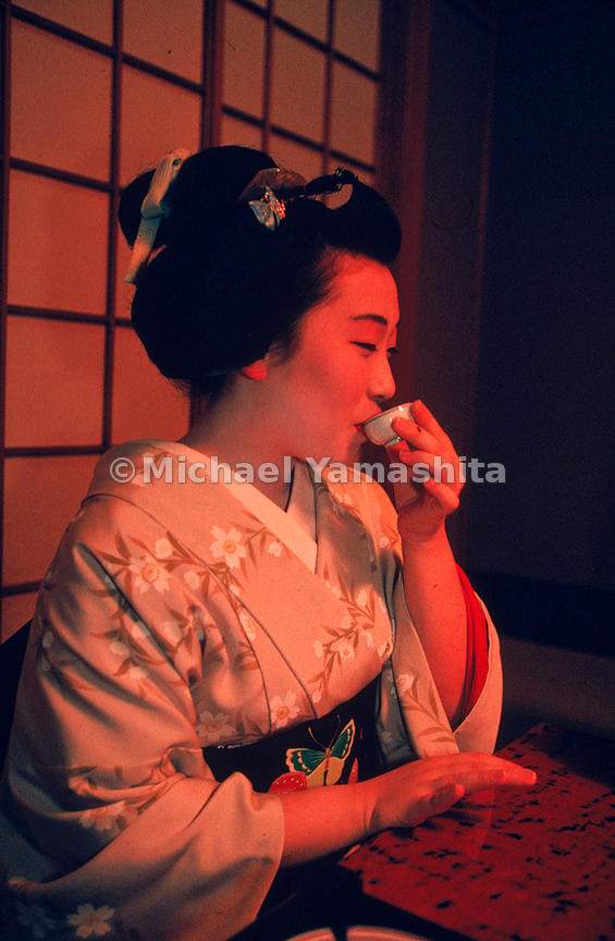 Geisha are true artists; some indeed are National Living treasures. Dedication and perseverance are mandatory for the geisha who will have to undertake many years of rigorous training in the performing arts before she can be recognized as a true professional.