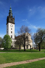 Cathedral of st. Stephen, Litomerice, Czech Republic