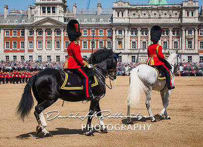 Trooping_the_Colour_8799