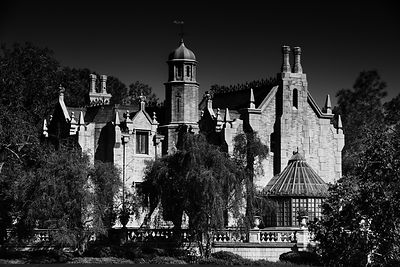 Disney Haunted Mansion - Monochrome