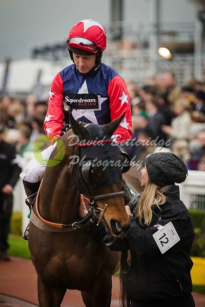 Cheltenham_Gold_Cup_Day_2015_-167