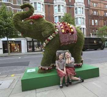 Young elephant fans on Sloane Street