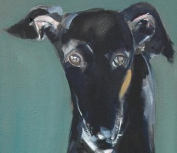 Sally Muir Dogs