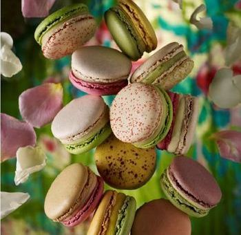 Pierre Herme Les Jardins Macaron collection