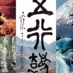 5 element qigong master wu