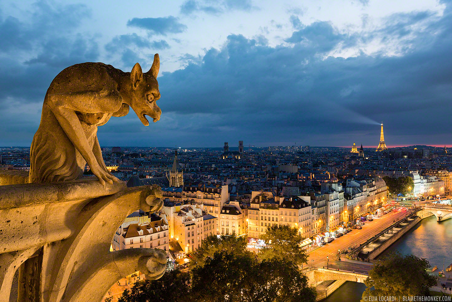 From the top of Notre Dame, the old stone gargoyles patiently watch over the city of Paris.