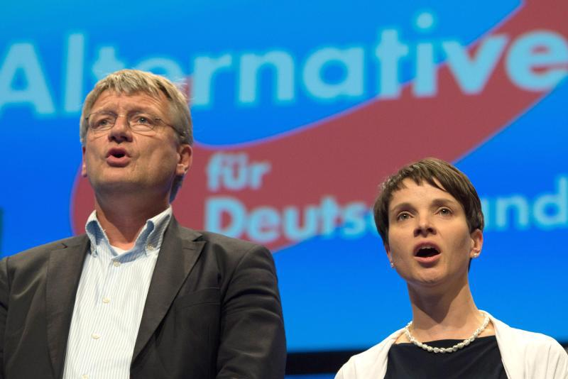 meuthen-petry