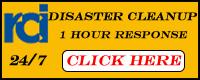 Website for RCI Restoration Services