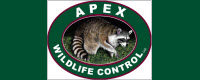 Apex Wildlife Control, LLC