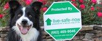 Website for Live-Safe-Now, LLC