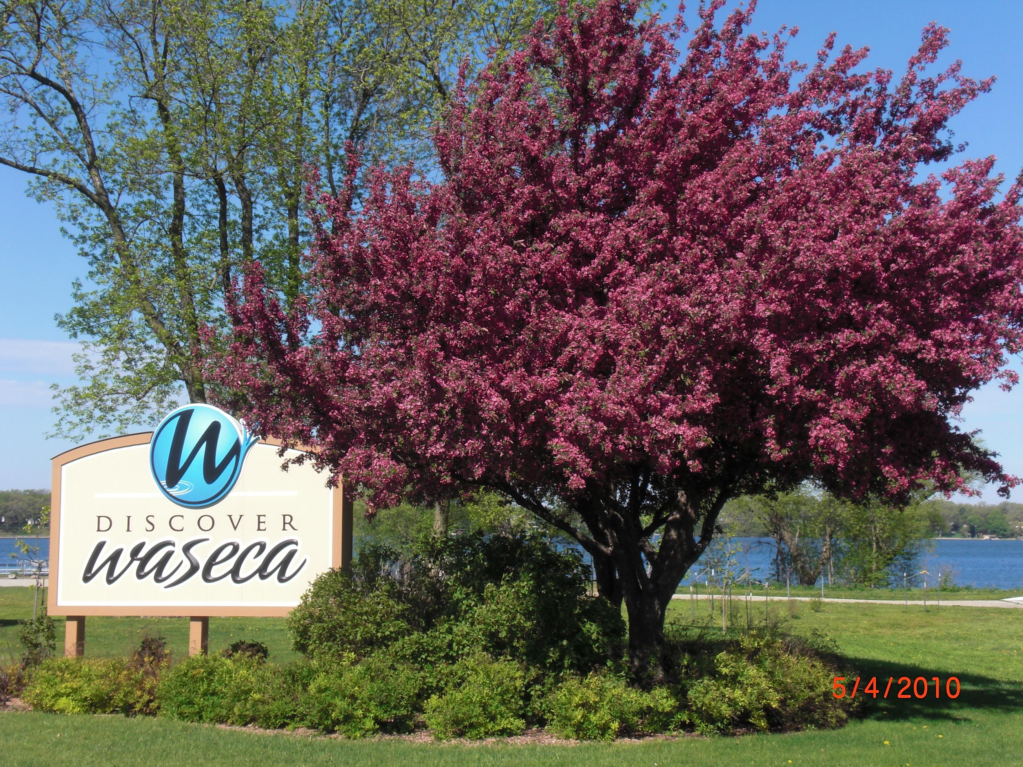 Waseca, start a company