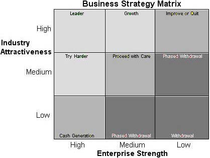How to create a comprehensive business plan business strategy matrix wajeb Choice Image