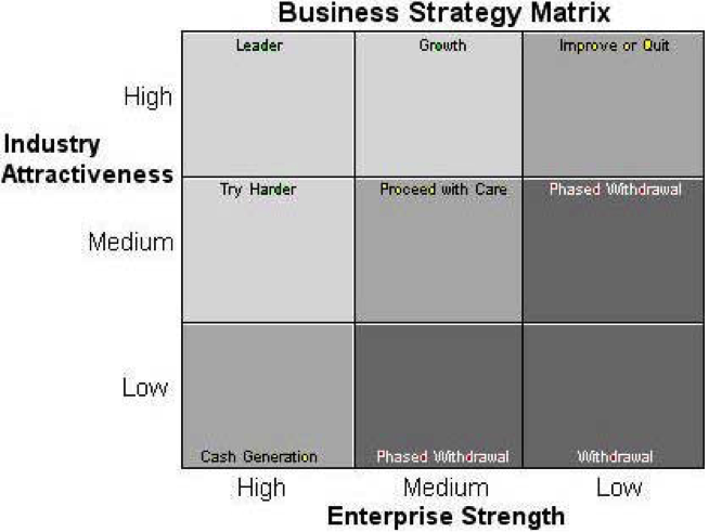 Description: Business Strategy Matrix