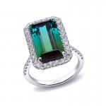 Coast Diamond Signature Color - LCK10141-GT