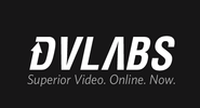 DV Labs Business Cards