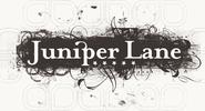 Juniper Lane Branding