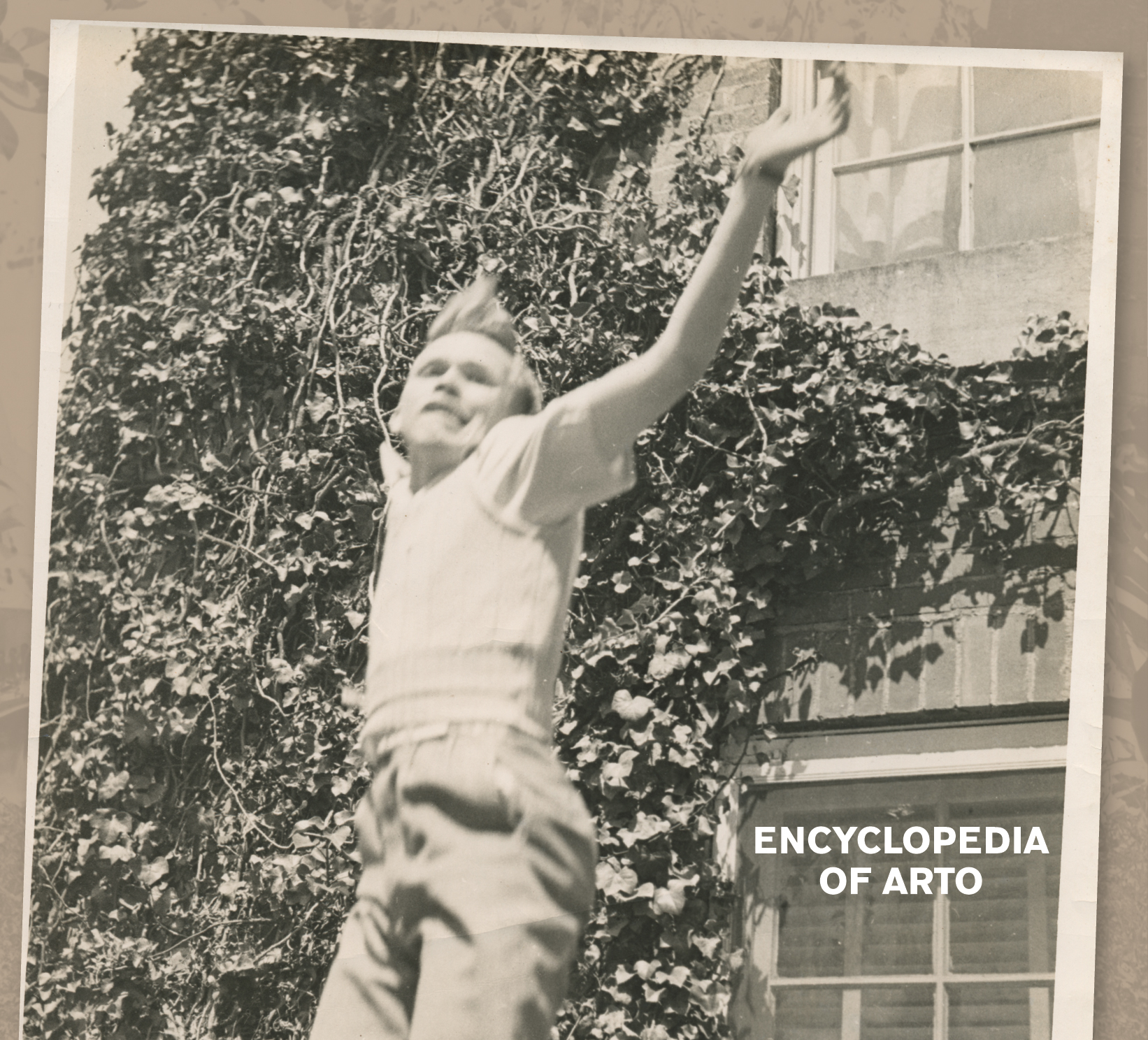 Arto Lindsay - Encyclopédia of Arto
