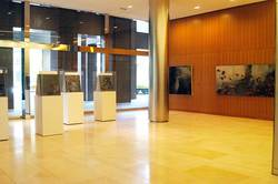 Sf lobbly gallery installation 6 web image
