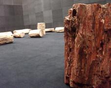 Jimmie durham exhibition  rocks encouraged  at portikus frankfurt 1