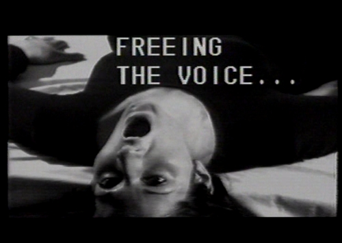 Marina abramovic  freeing the voice  1976 still1