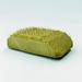 Porcupine   photo aure%c2%a6%c3%bclien mole