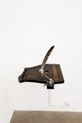 09 cr eagleanddeer 2013