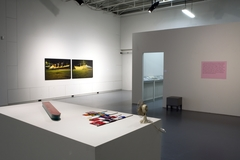 Allan sekula ship of fools exhibition view m hka clinckx 75