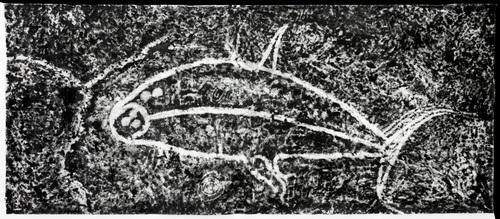 Al petroglyph