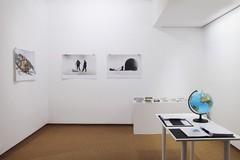 29 articantartic instalacio jp ak web